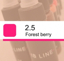 Tattoomix IB_Line 2.5 Forest Berry